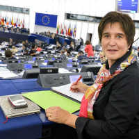 Ich bei meiner ersten Plenarsitzung in Straßburg im Juli 2014